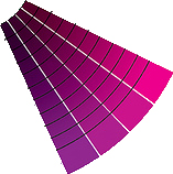 pink and purple
